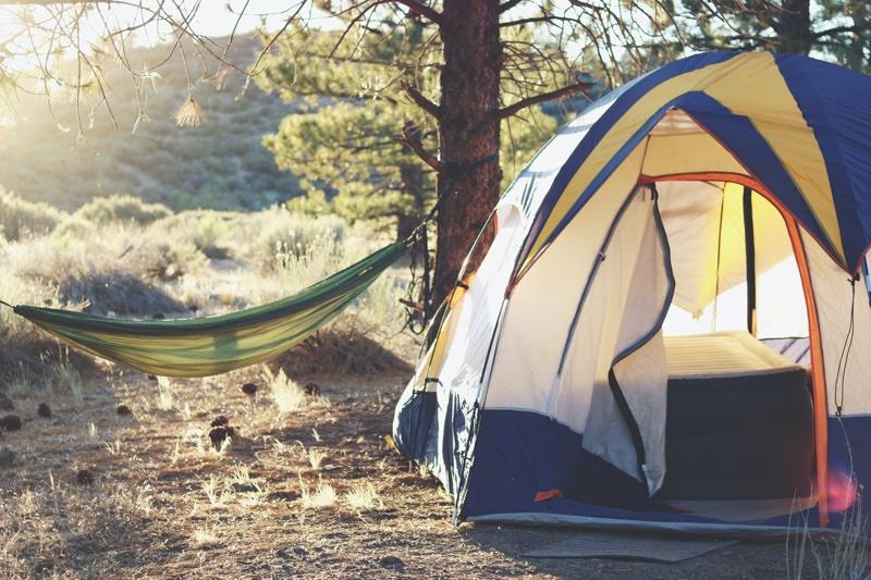 Haengematte und Zelt im Wald
